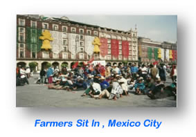 Farmers Sit In , Mexico City