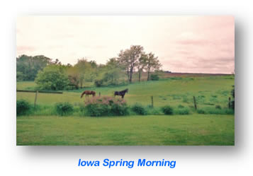 Iowa Spring Morning